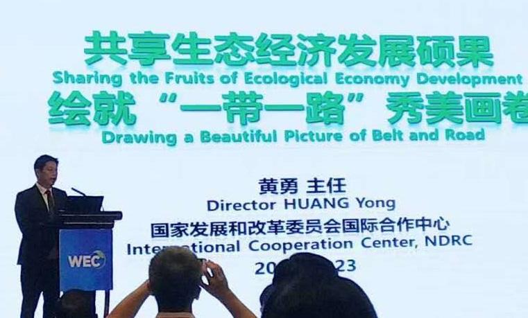 18黄勇 国家发展和改革委员会国际合作中心主任做主题演讲