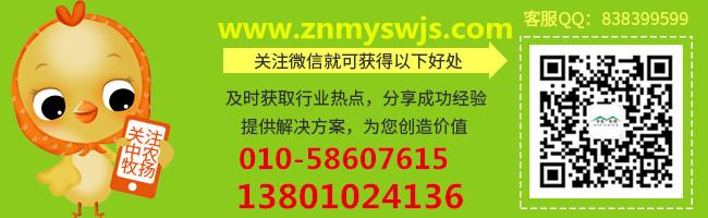 中农牧扬微信二维码_副本 (2)