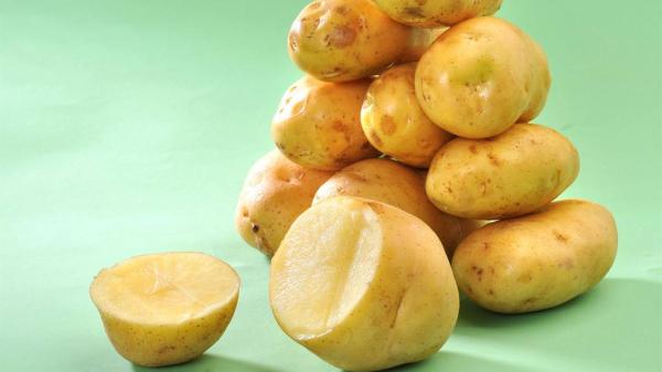 成都护理型养老院为您揭晓尿酸高患者的饮食福音-土豆