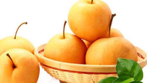 成都养老院经验分享-一暄康养-饭后吃梨,排泄致癌物质-鸭梨