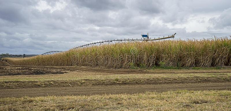 澳大利亚农业考察