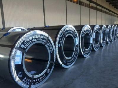 河北粉末喷涂彩板品牌有哪些_粉末喷涂彩板生产厂家_天物粉末喷涂彩板