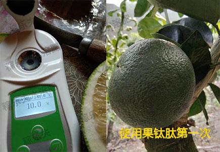 葡萄柚使用果钛肽第一次效果