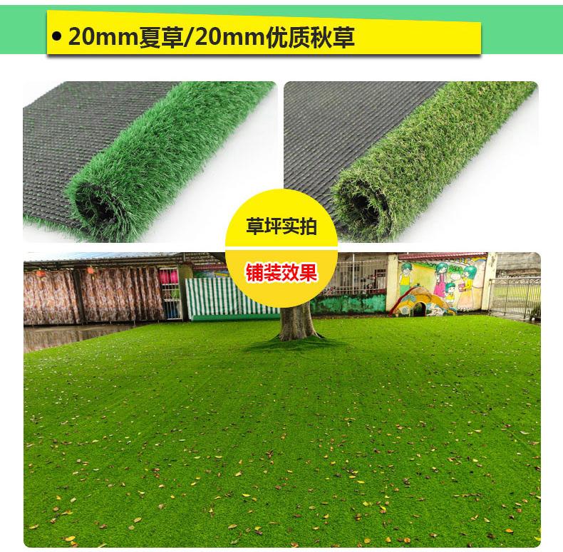 庭园草坪 人造草坪