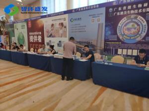 广东涂料产业发展