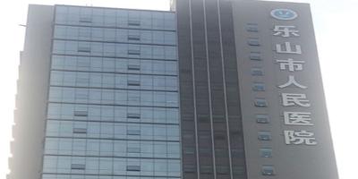 乐山人民医院中心机房以及灾备中心机房监控系统