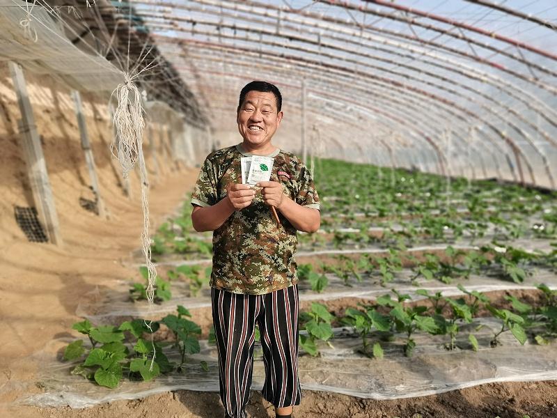 种蔬菜用什么肥料