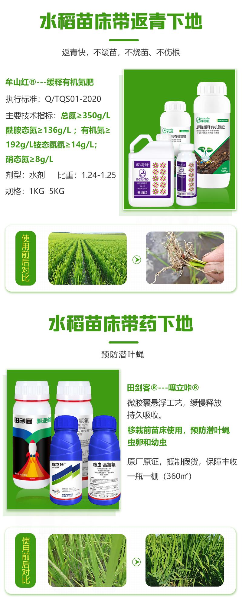 水稻苗床解决方案